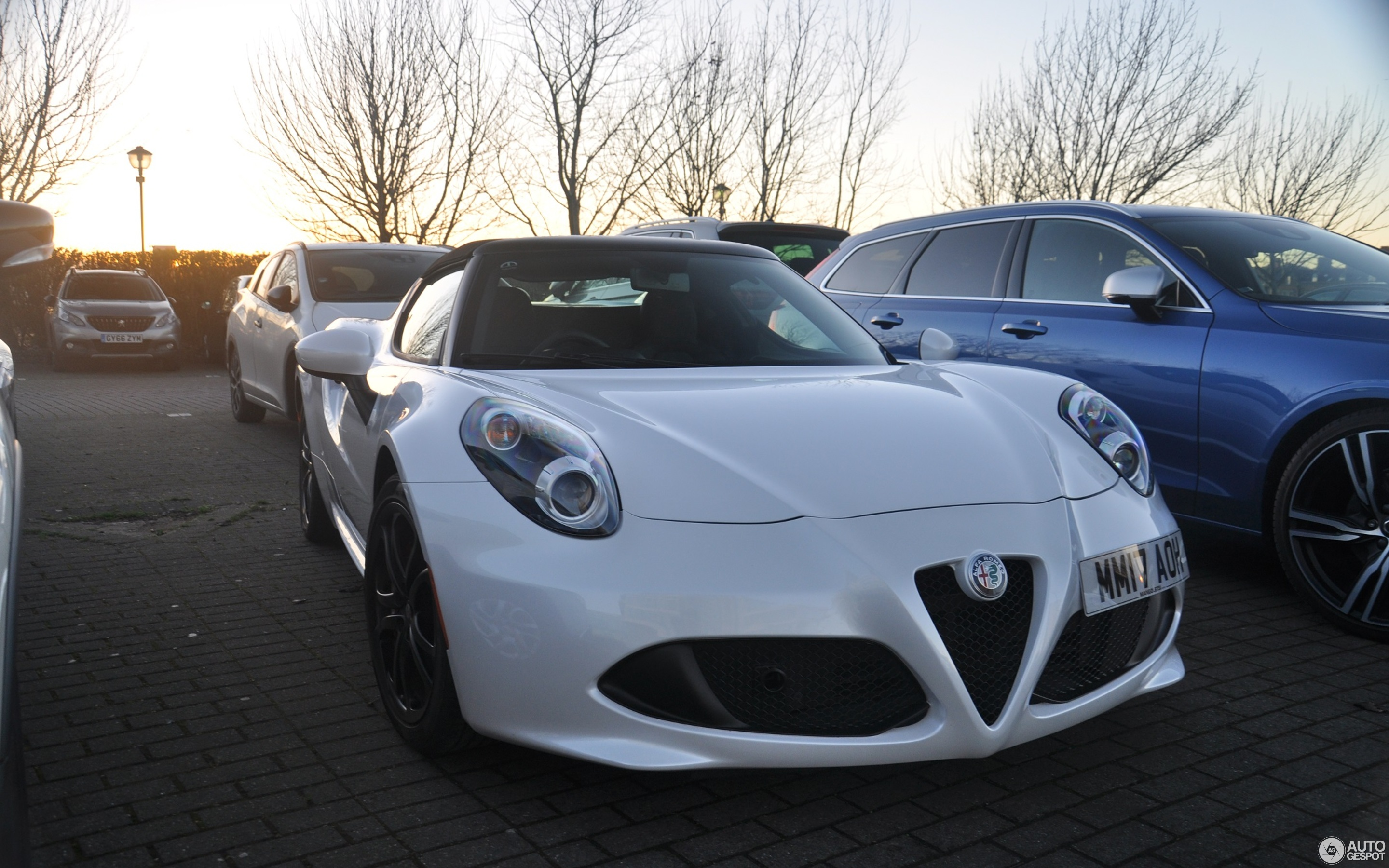 Alfa romeo spider forum uk
