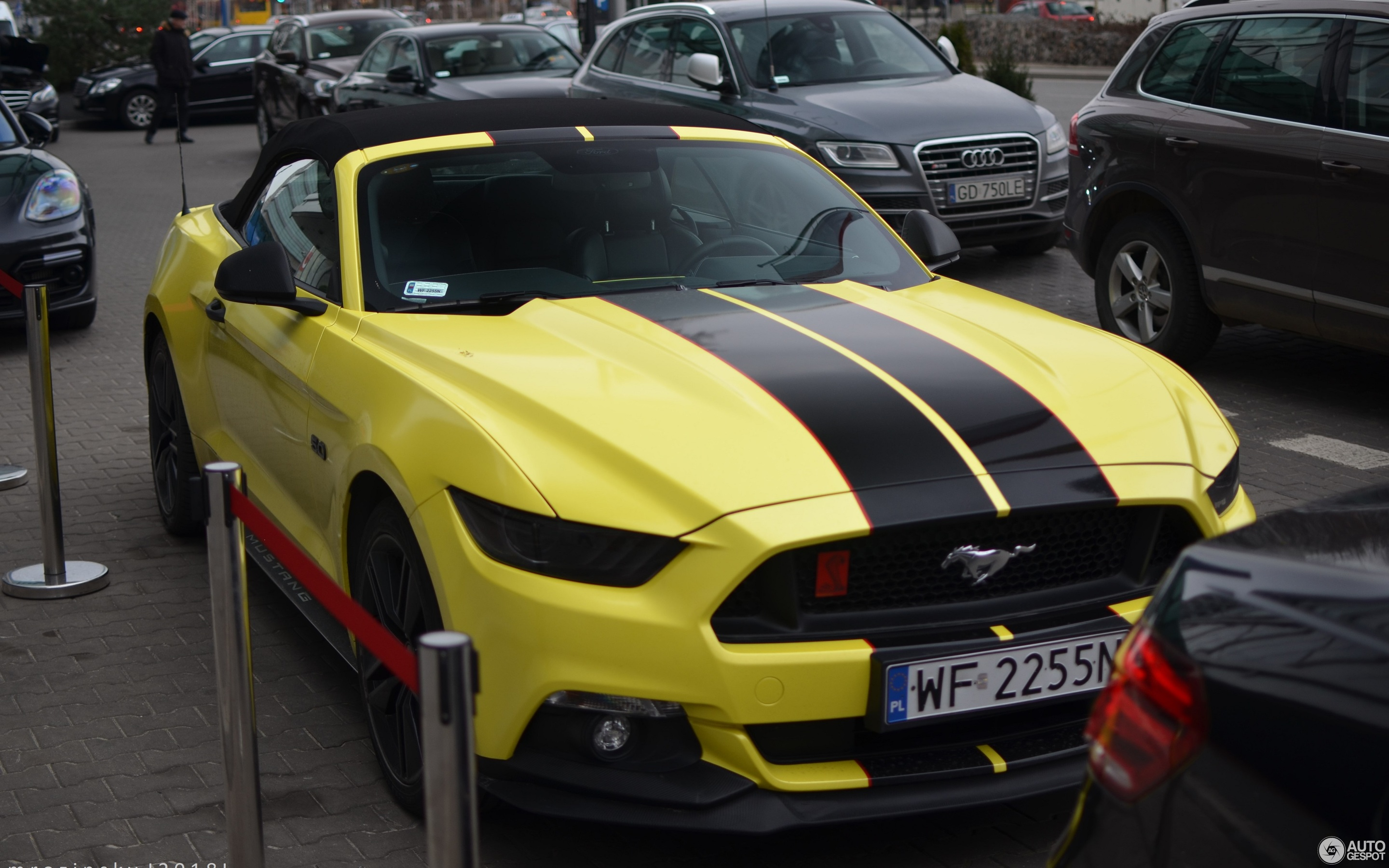 unveils img the mustang fortune new ford all