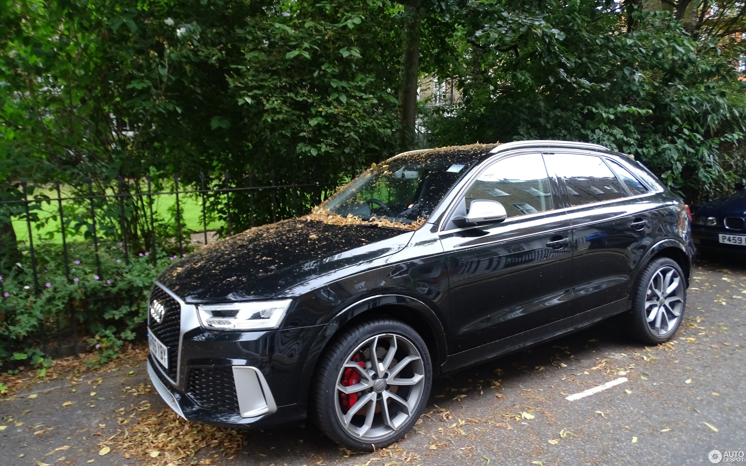 audi rs q3 2015 13 february 2018 autogespot. Black Bedroom Furniture Sets. Home Design Ideas