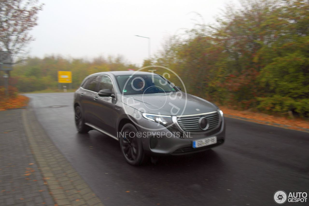 Mercedes-Benz EQC (2019) 21